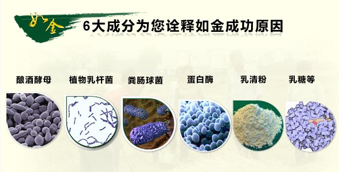如金原菌牛羊粪发酵专用功能菌