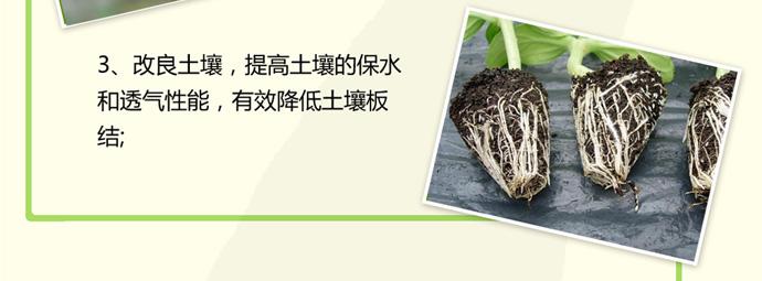 如金中草药专用em菌种